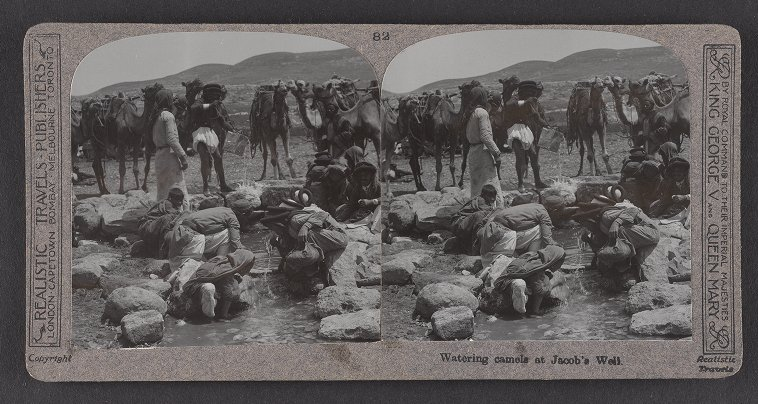 Watering camels at Jacob's Well