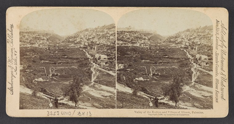 Valley of the Kedron and Village of Siloam, Palestine