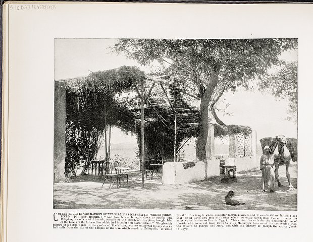 Coffee House in the Garden of the Virgin at Matariyeh--Where Joseph lived