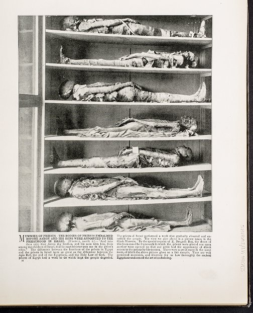 Mummies of Priests--The bodies of priests embalmed before Aaron and his sons were appointed to the priesthood in Israel