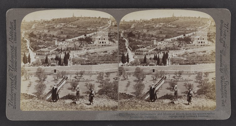 Garden of Gethsemane and Mount of Olives, from the eastern wall, Jerusalem, Palestine