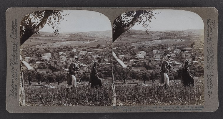 Bethany, where our Lord was annointed by Mary--S. from eastern slope of Olivet--Palestine