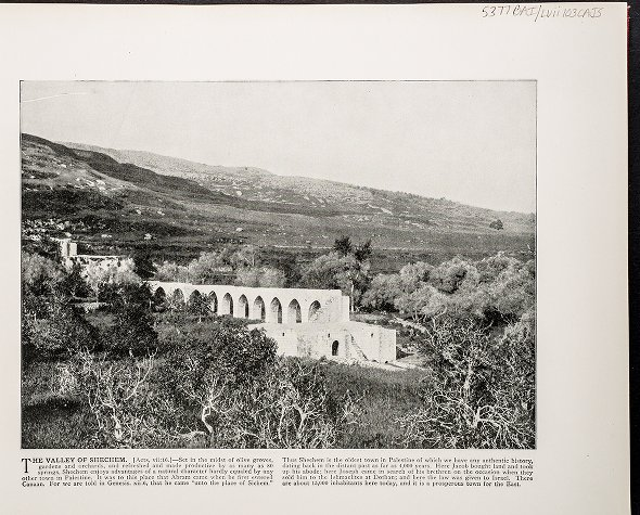 The Valley of Shechem