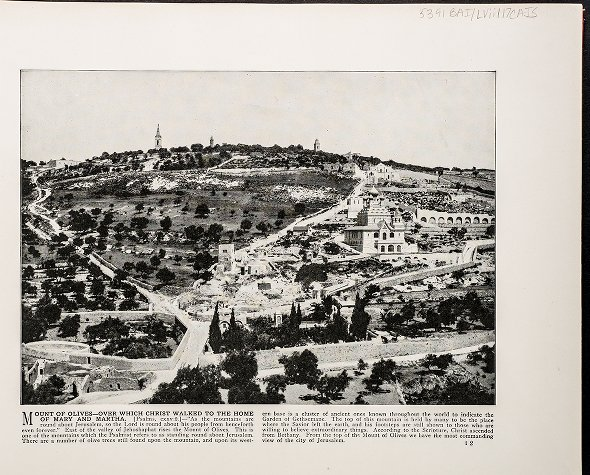 Mount of Olives--Over which Christ walked to the home of Mary and Martha