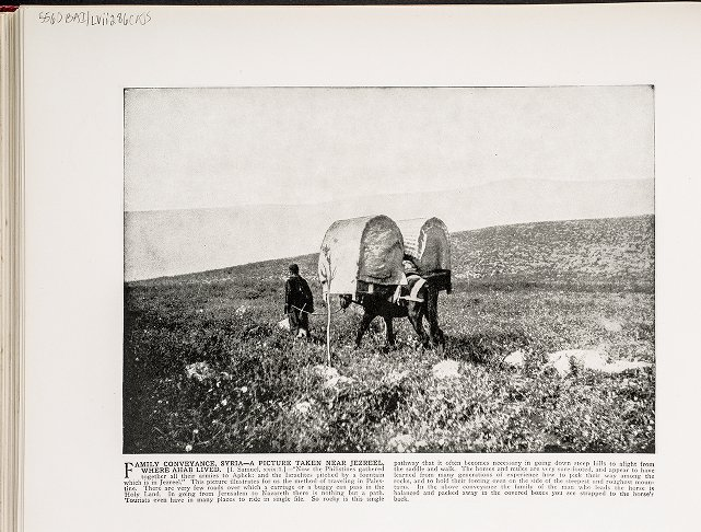 Family Conveyance, Syria--A picture taken near Jezreel, where Ahab lived