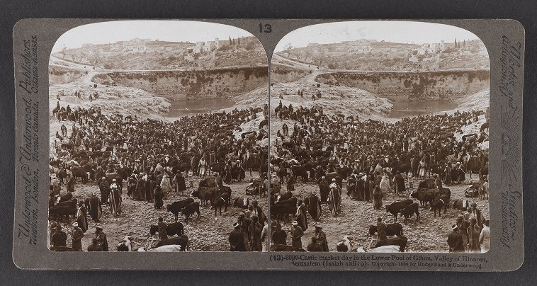 Cattle market day in the Lower Pool of Gihon, Valley of Hinnom, Jerusalem (Isaiah xxii: 9)