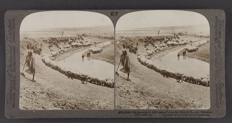 'By the side of still waters'--on the plain of Jezreel, Palestine (Ps. xxiii :2)