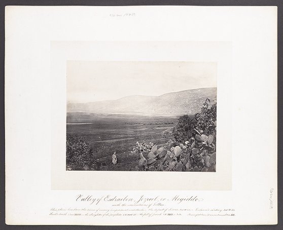 Valley of Esdraelon, Jezreel, or Megiddo with the mountains of Gilboa :