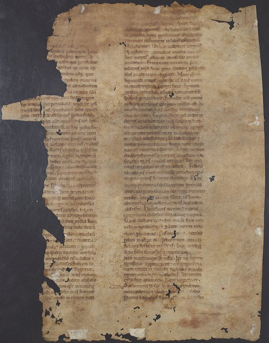 Lawrence J. Schoenberg Collection: Oversize LJS 36 - Manuscript leaf from an account of the Jewish Wars